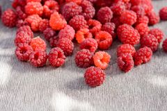 Ripe raspberries scattered on the table. Ripe red raspberries scattered on the table Royalty Free Stock Photography