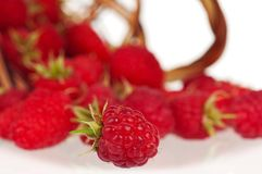 Ripe raspberries. Scattered from wicker basket on white background Stock Photo