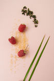 Ripe raspberries, sugar and a scattering of green tea on a paste Stock Image