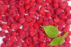 Ripe raspberries wallpaper Stock Image