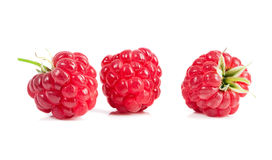 Ripe raspberries on white background. Red juicy berries closeup. Royalty Free Stock Image
