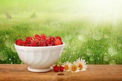 Ripe raspberries in a white plate on a wooden table Royalty Free Stock Photos
