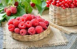 Ripe raspberries in wicker basket Stock Photos