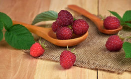 Ripe raspberries in a wooden spoon. Natural vitamins. Natural tr. Raspberries in a rustic setting. Health from nature. Proper nutrition. Close-up. The selected Royalty Free Stock Photography