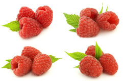 Ripe raspberry. Ripe and sweet raspberry with leaves Stock Images