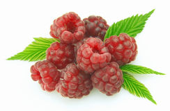 Ripe raspberry. Ripe sweet raspberry with leaves Stock Image