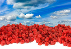 A ripe raspberry against the sky Royalty Free Stock Images
