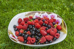 Ripe Raspberry & Black Currant On A Saucer Royalty Free Stock Photography