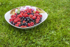 Ripe Raspberry & Black Currant On A Saucer Royalty Free Stock Image