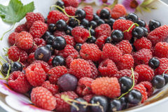 Ripe Raspberry & Black Currant On A Saucer Stock Photo