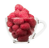 Ripe raspberry in cup. Isolated on a white background Royalty Free Stock Photography
