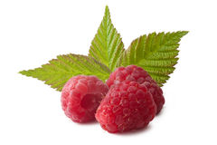 Ripe raspberry with green leaf Royalty Free Stock Image