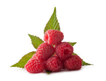 Ripe raspberry with green leaf Stock Image