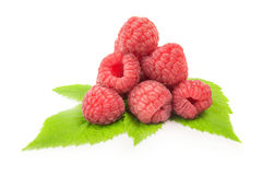 Ripe raspberry with green leaf on white background.  Stock Photos