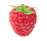 Ripe raspberry isolated. Ripe raspberry with green leaf isolated on white background with clipping path Stock Image