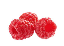 Ripe raspberry isolated Stock Images