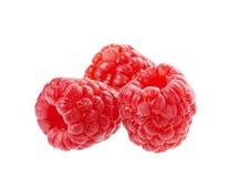 Ripe raspberry isolated Stock Photography