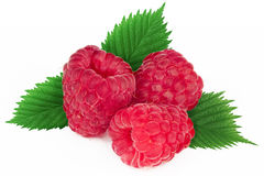 Ripe raspberry with leaf. Isolated on a white background Stock Images