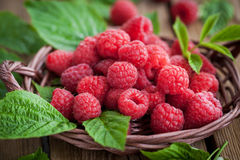 Ripe raspberry with leaf Royalty Free Stock Photos