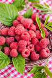 Ripe raspberry with leaf Stock Photography