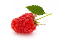 Fresh ripe raspberry with leaf isolated on the white background. Ripe raspberry with leaf isolated on the white background Stock Photography