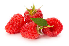 Fresh ripe raspberry with leaf isolated on the white background. Ripe raspberry with leaf isolated on the white background Royalty Free Stock Photo