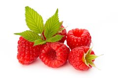 Fresh ripe raspberry with leaf isolated on the white background. Ripe raspberry with leaf isolated on the white background Royalty Free Stock Image