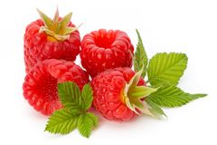Fresh ripe raspberry with leaf isolated on the white background. Ripe raspberry with leaf isolated on the white background Stock Image