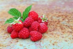 Ripe raspberry with a leaf. On an old metal background Royalty Free Stock Photography