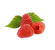 Ripe raspberry with leaves. Three ripe raspberries on the branch with leaves. Isolated on white Stock Image