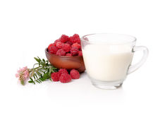 Ripe raspberry in a plate and glass of milk on a white backgroun. Ripe raspberries in clay piala and milk on a white background Royalty Free Stock Photography