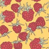 Ripe raspberry seamless pettern  isolated on oranje background. Stock Photos