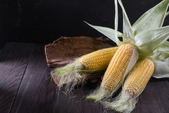 Ripe raw corn cob and green leaves. On dark wooden background Royalty Free Stock Photography