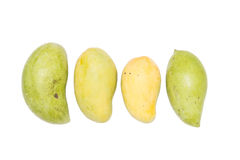 Ripe and raw mangoes Stock Photography