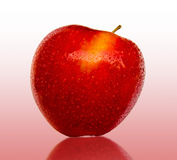 Ripe Red Apple. A ripe red apple with water drpos on a mirror background Stock Photos