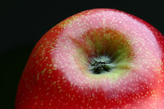 Ripe red apple. Macro view of ripe red apple isolated on black background royalty free stock photo