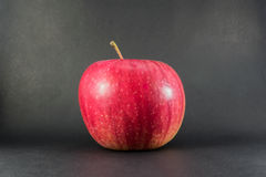 Ripe red apple on a black wooden board background with copyspace, back to school autumn theme. Ripe red apple on a black wooden board background with copyspace Royalty Free Stock Photo