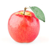 Ripe red apple with leaf. On white background stock images