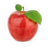 Ripe red apple Stock Image