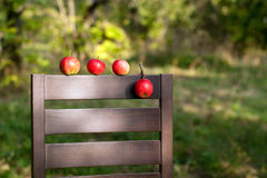Ripe red apples on the back of chair Royalty Free Stock Photos