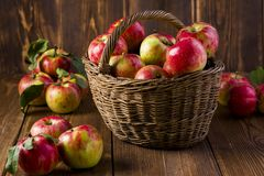 Ripe red apples in a basket. On the table royalty free stock photography