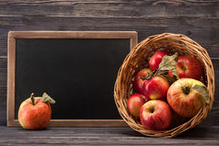 Ripe red apples and chalk board Stock Photos