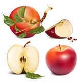 Ripe red apples with green leaves. Stock Photos