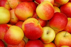 Ripe red apples in a heap Royalty Free Stock Images