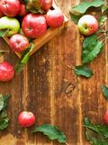 Apples on wooden background royalty free stock images