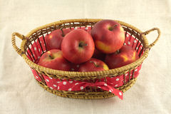Ripe red apples in long brown wicker basket on beige cloth Royalty Free Stock Image