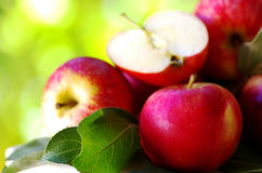 Ripe red apples on table Stock Photography