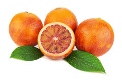 Ripe red blood oranges with cut and green leaves. Stock Image