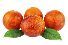 Ripe red blood oranges with green leaves isolated on white. Stock Photography