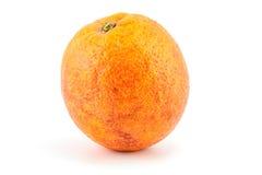 Ripe red blood oranges Stock Image